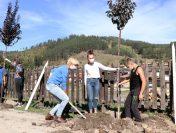 Ученици и общински служители засаждат над 100 дръвчета в Копривщица
